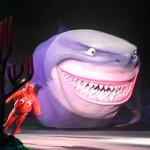 NemoSharks1